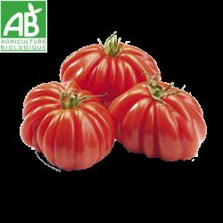 Tomate côtelée