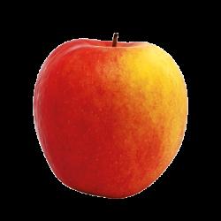 Pomme delblush