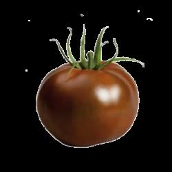 Tomate Kakao