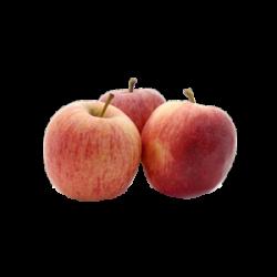 Pomme gala le kg